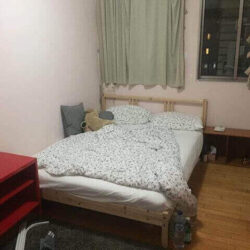 One Room for Rent in a Large 4 Bedroom Apartment