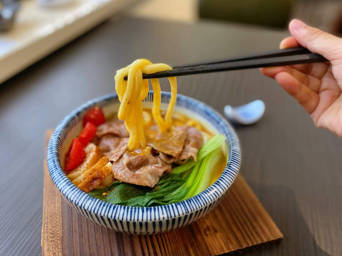 Curry udon (focused)