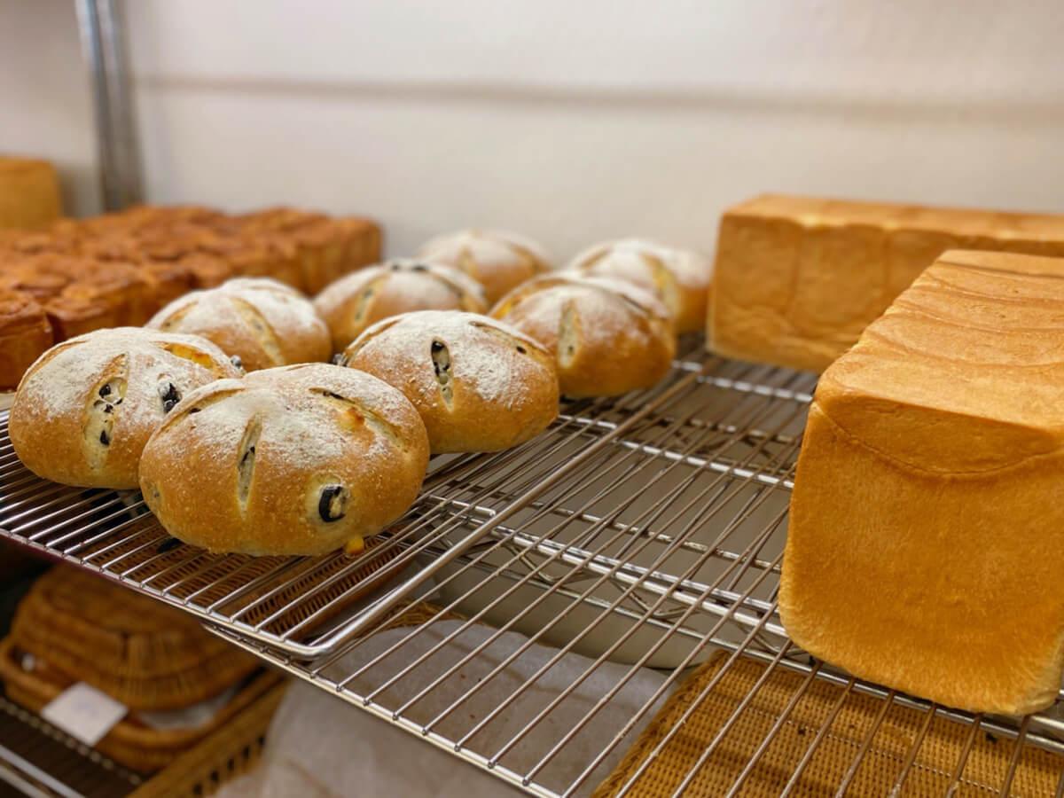 Bread buns (display)