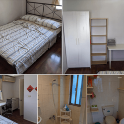 Single Room in Two Bedroom Apartment Available for Rent