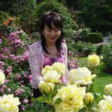 Profile picture of Angela-Fan